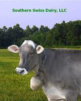 Southern_swiss_screen_saver_with_pecan
